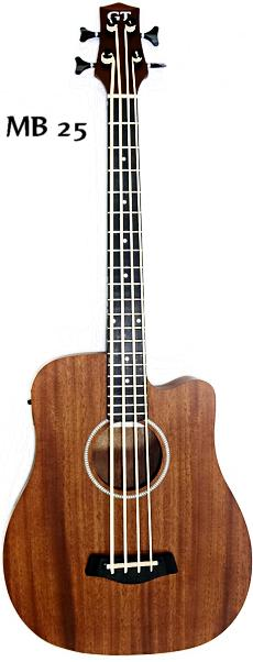 Gold Tone 'M-Bass25' Acoustic/Electric MicroBass